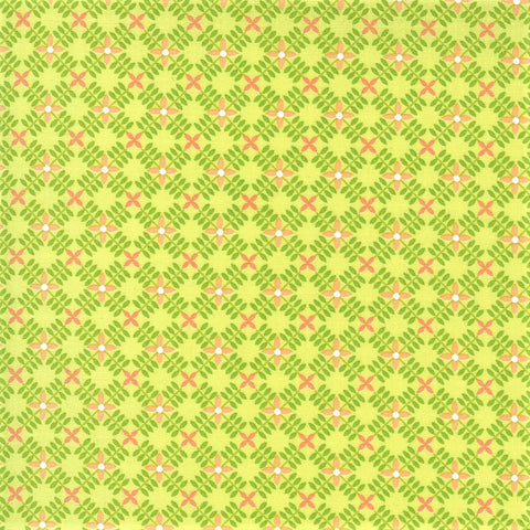 Moda Apricot & Ash 29104 27 Light Lime Petal Path By The Yard