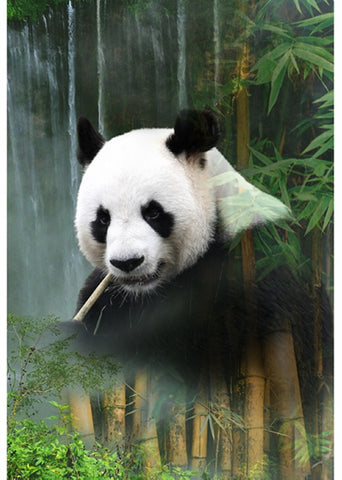 "Hoffman Call Of The Wild 4634 449 Waterfall Panda 30"" Panel By the Panel (not by the yard)"