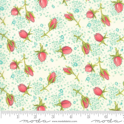 Moda Robin Pickens Abby Rose 48672 11 Cream Rose Buds By The Yard