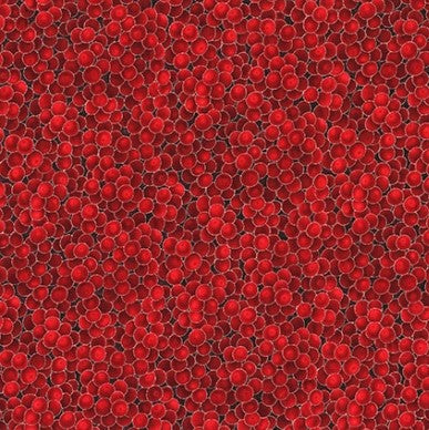 Hoffman Metallic Holiday Decadence 8556 5 Red/Silver Berries By The Yard