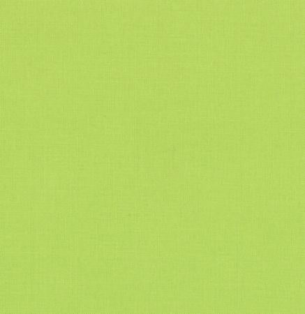 Moda Bella Solids 9900 173  Summer House Lime By The Yard