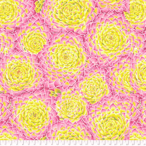 Free Spirit Fabrics Kaffe Fassett Collective PWPJ091 Lime Large Succulent By The Yard