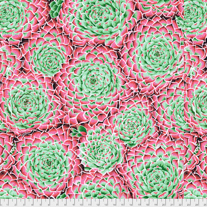 Free Spirit Fabrics Kaffe Fassett Collective Philip Jacobs PWPJ091 Pink Large Succulent By The Yard