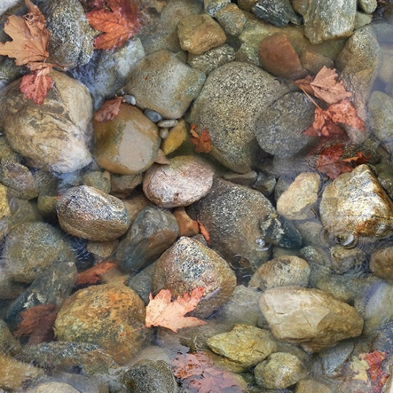 Hoffman Digital Print Call Of The Wild 4613 700 Rusty River Stones By The Yard