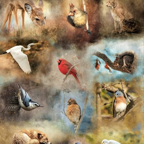 Hoffman Call Of The Wild 4734 466 Fauna Bird Watching 1 Yard Panel By the Panel (not by the yard)