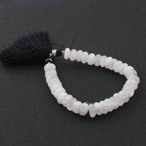 1 Long Strand White Rainbow Moonstone faceted Rondelles - Rondelle Beads 9mmx6mm 9 Inches BR3083 - Tucson Beads