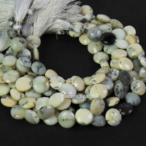 1 Strand Dendrite Opal Faceted  Briolettes  -  Coin Shape Briolettes 10mmx10mm-11mmx11mm  8 Inch  BR1859 - Tucson Beads