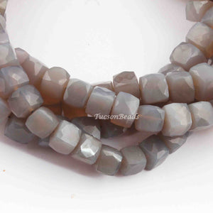 1 Strands Excellent Quality Gray Moonstone Faceted Cube Briolettes - Box Shape Beads 7mm-8mm 9 Inches BR740 - Tucson Beads