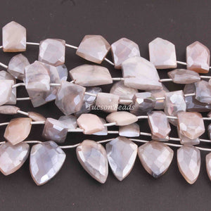 1 Strand Gray Rainbow Moonstone Silver Coated  Faceted Briolettes  -Pentagon Shape Briolettes  - 17mmx12mm-16mmx12mm  -7.5 Inches BR3250 - Tucson Beads