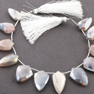1Strand Gray Moonstone Faceted Arrow shape Briolettes 16mmx8mm-25mmx12mm 7 Inch BR3123 - Tucson Beads