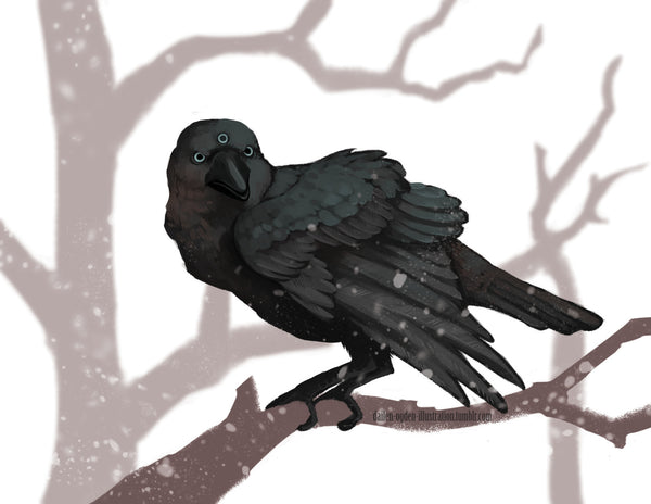 Three Eyed Crow by Dalien Ogden