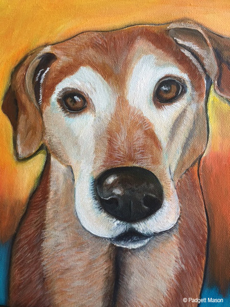 Dog portrait by animal painter Padgett Mason