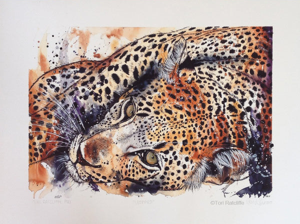 Leopard at Rest by Tori Ratcliffe