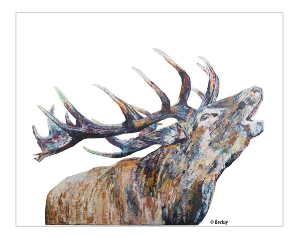 """Murdo"" painting of a roaring stag by Becksy"