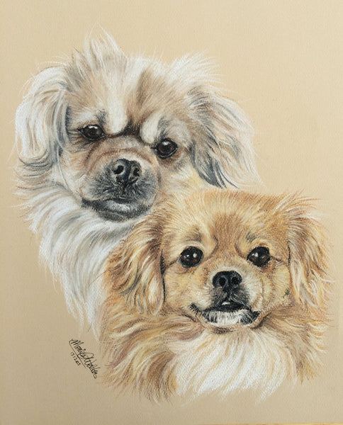 Sashi and Coqo pastel by Monica Webster
