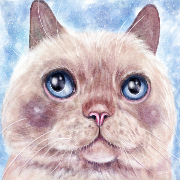 Trident the Cat art by Ellie Szymanska-Saleem
