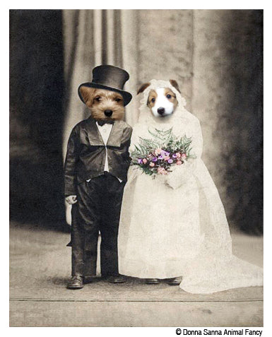 Wedded Bliss by Donna Sanna Animal Fancy