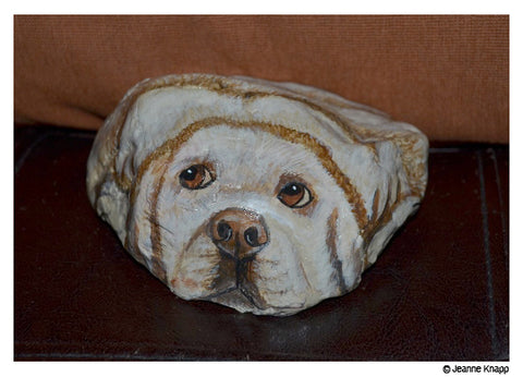 Dog by Jeanne Knap - hand painted on stone