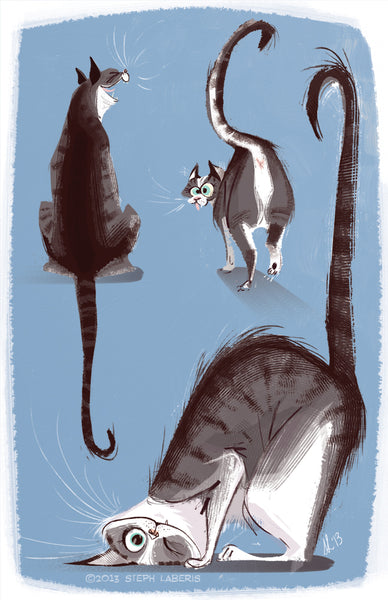 Cat illustration by Steph Laberis