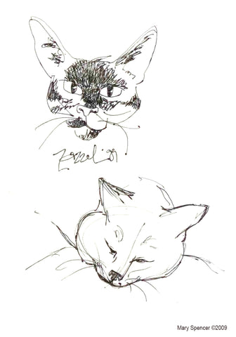 Pen and Ink Cat sketches