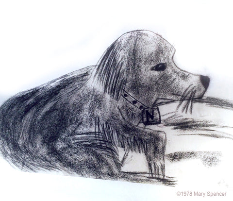 "Dog Drawing ""Samantha"" Age 10 by Mary Spencer"