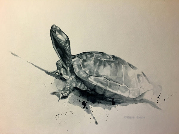 turtle drawing by Russ Howie