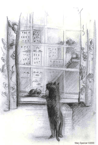 Cat looking out window pencil drawing