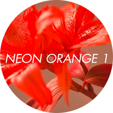 Load image into Gallery viewer, Nr 8 Viva La Manicure - Neon Orange I (5g)