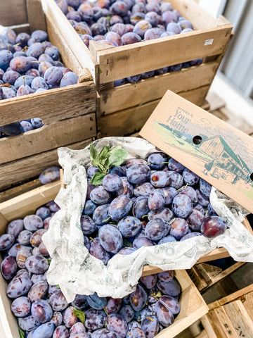 Seasonal Prune Plums - SEPT