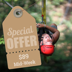 ACE Adventure Resort - Summer $89 Mid-Week Special