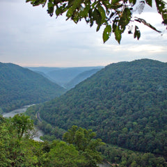ACE Adventure Resort - Hiking View of New River Gorge