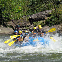 Lower New River Whitewater Rafting - Half Day