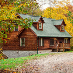 ACE Adventure Resort - Red Fox Log Home
