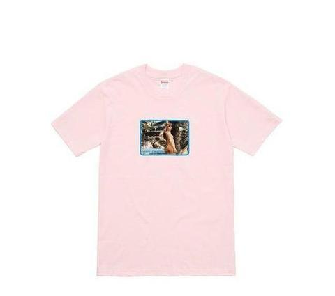 Supreme Larry Clark Girl Tee Pale Pink