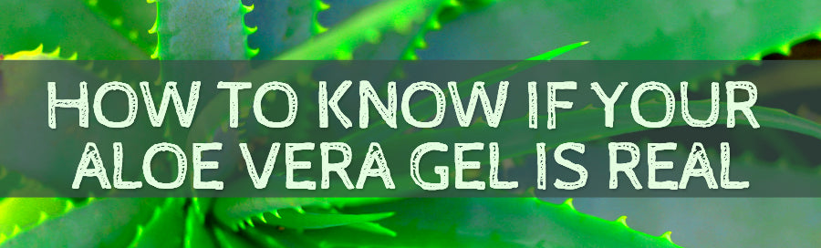 How To Know If Your Aloe Vera Gel Is Real - Amara Beauty