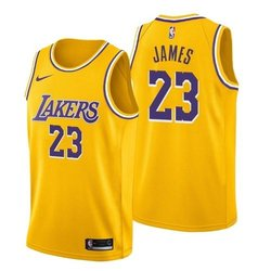 30a24cf84 LeBron James - Los Angeles Lakers - Icon Swingman Jersey (2018 19)