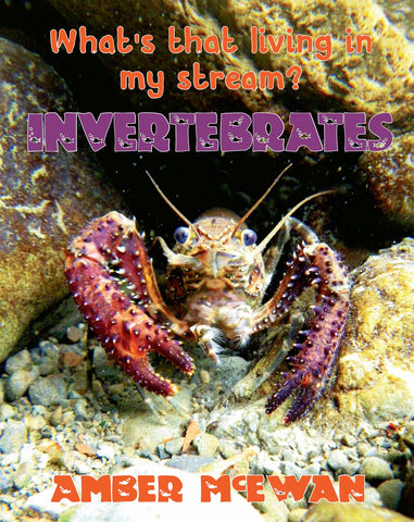 What's that living in my Stream?  Invertebrates by Amber McEwan
