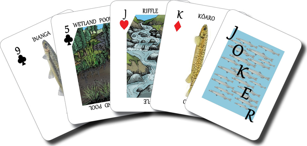 Go Whitebait - a native fish card game