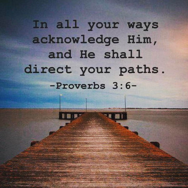 Acknowledge Him, and he'll direct your paths ~ Proverbs 3:6