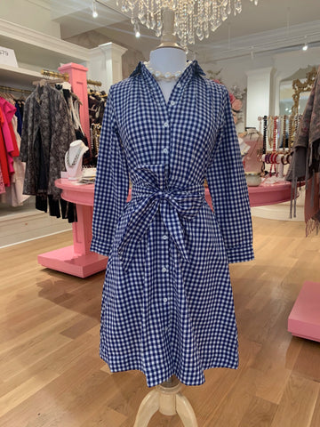 Blue Gingham Shirtdress