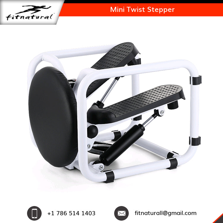 Mini Twist Stepper Treadmill Multi Function Gym