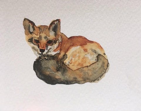 Fuchs, Kunstzimmer, Aquarell Illustration