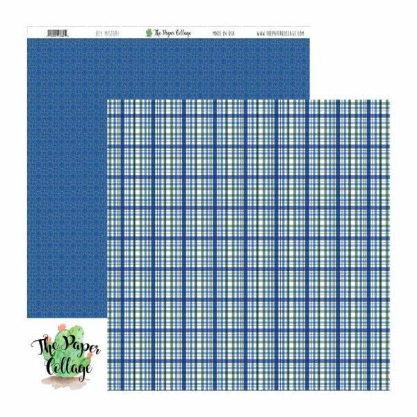 Hey Mister Blue Plaid Paper