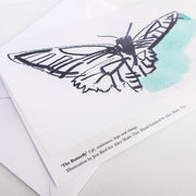 butterfly greeting card | positivity cards | life endurance hope change