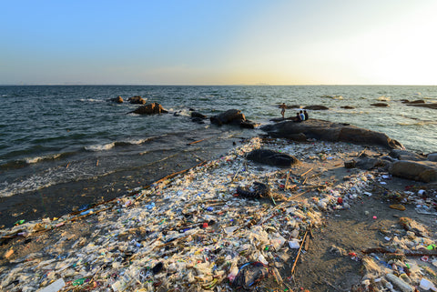 Dirty beach littered with plastic debris