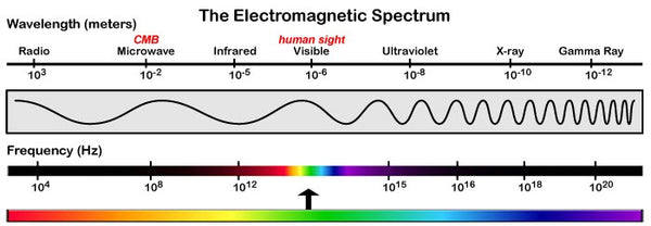 The Electromagnetic Spectrum Naked Paleo Light Waves Baxter Blue