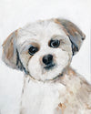 Modern Dog Portrait - Pet Art for your home by Vancouver artist Liz Clay. Original hand-painted custom dog painting.  Custom Puppy Original Painting