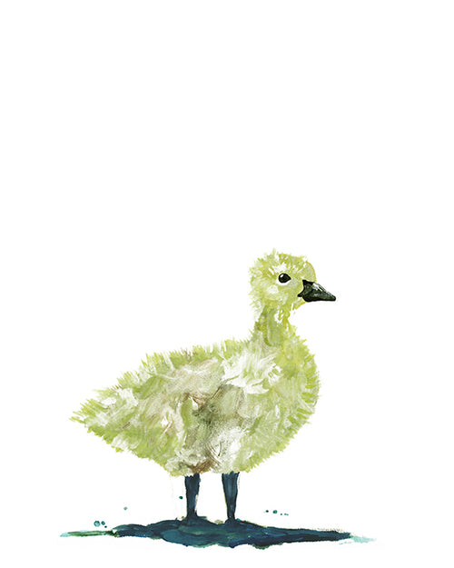 baby Canada goose art print painting cute