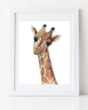Nursery Decor Safari Baby Giraffe Art Print
