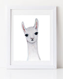 Llama art print by Liz Clay of Cici Art Factory